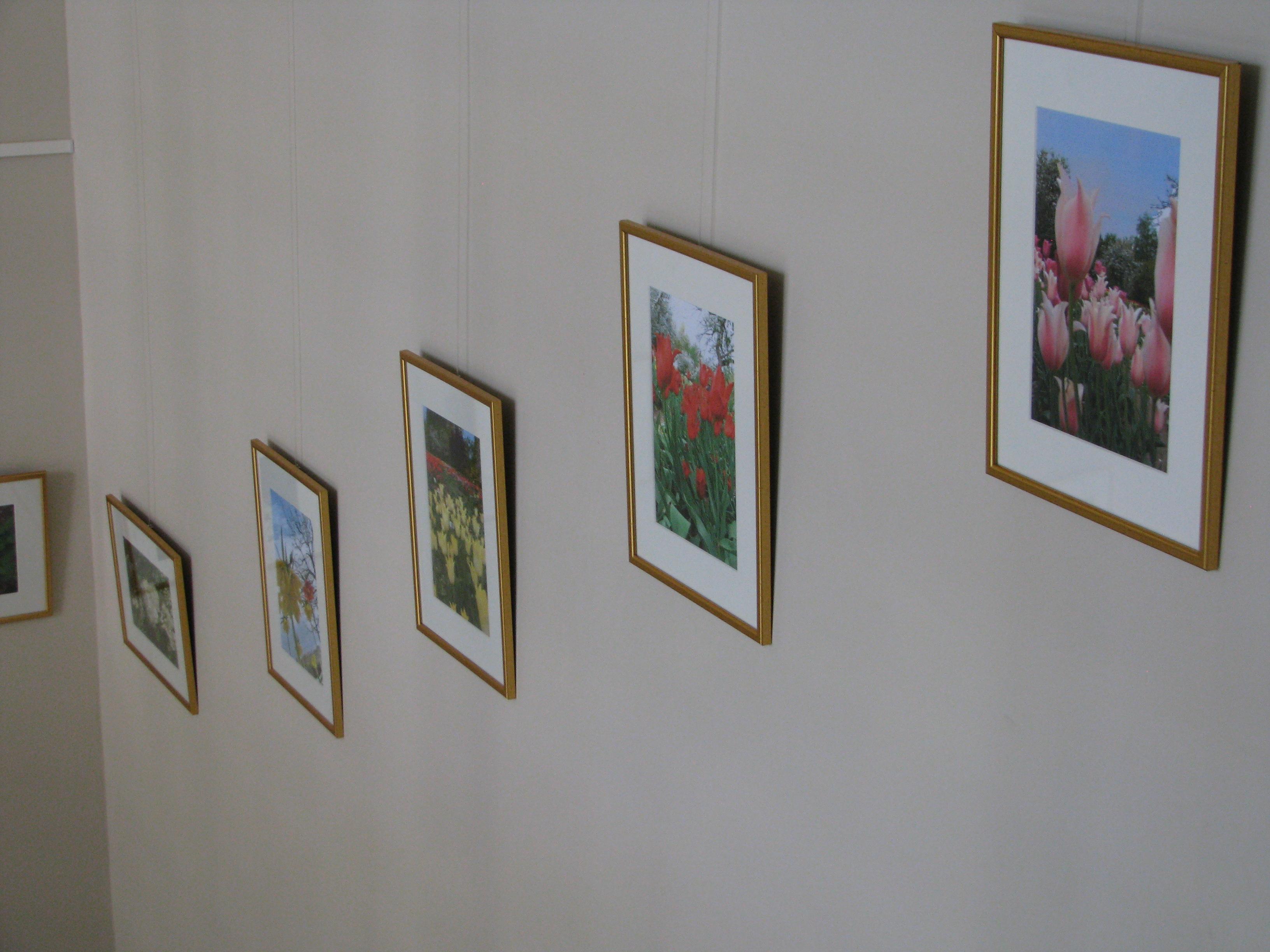 Padovanotų foto darbų ekspozicija